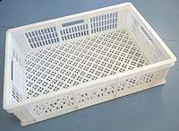 Коробка RINGOPLAST для рыбы и птицы 600x400x154