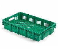 Коробка RINGOPLAST для рыбы и птицы 600x400x110