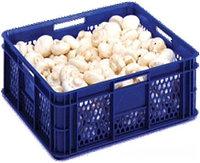 Коробка RINGOPLAST для овощей и фруктов 400x350x150, фото 1
