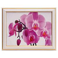"""Картина """"Розовая орхидея"""" 15х20 см (18х23см)"""