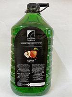 Средство для мытья посуды «Silver», 5 л., яблоко