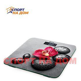 Напольные стеклянные электронные весы VITEK