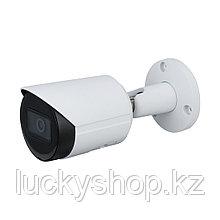 Цилиндрическая видеокамера Dahua DH-IPC-HFW2531SP-S-0280B