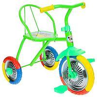 """Велосипед трёхколёсный Micio TR-313, колёса 10""""/8"""", цвет зеленый"""