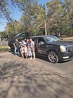Лимузины Алматы