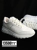 Кроссовки Prada бел, фото 1