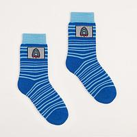 Носки детские махровые, цвет васильковый, размер 18-20
