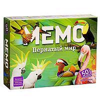 Настольная игра «Мемо. Пернатый мир», 50 карточек + познавательная брошюра, фото 1