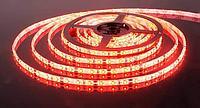 TDM Светодиод.лента 60Led/м красный