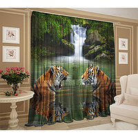Тюль Тигры у водопада 147х267 +/- 3см, 2шт, шифон, п/э
