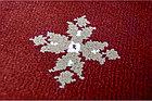 Ковролин Atlas  2702 8 41355 Красный с крестами  (9мм)  4,0м, фото 2