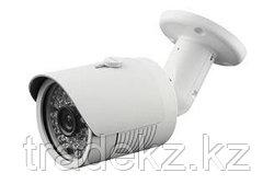 LBH48 S20 видеокамера IP цветная