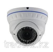 LIRDNT S130 видеокамера IP цветная