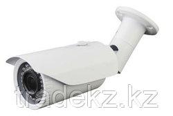 LIZM40S200 видеокамера IP цветная