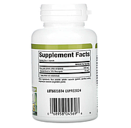 Natural Factors, Herbal Factors, Olive Leaf, 500 mg, 60 Capsules, фото 2