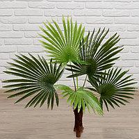 Дерево искусственное 'Пальма' 70 см