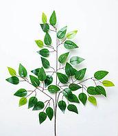 Фикус Бенджамина (темно-зеленый, коричневая ветвь), 60см.