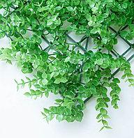 Коврик Эвкалипт, зеленый