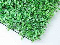 Коврик (Самшит), (зеленый)