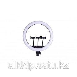 Кольцевая LED лампа SLP-G63 (3 крепл.тел.) (пульт) 220V (55см)!