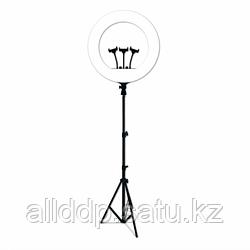 Профессиональная кольцевая лампа (RL-21) 54 см с штатив-треногой, пультом, USB