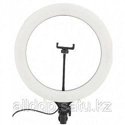 Кольцевая LED лампа A390 с пультом 39 см 220v крепление для телефона