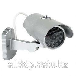Муляж камеры 2022-2