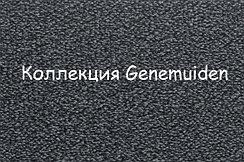 Коллекция Genemuiden