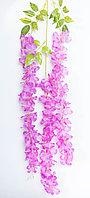 Глициния цветущая (пурпурная), тканевая