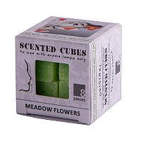 Аромакубики ЛУГОВЫЕ ЦВЕТЫ (8шт), Светло-зелёный, -, 32601 meadow_flowers