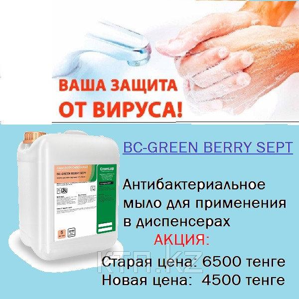Антисептическое гелеобразное средство BC-GREEN BERRY SEPT 5л.