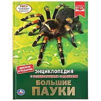 Энциклопедия с развивающими заданиями «Большие пауки», фото 1