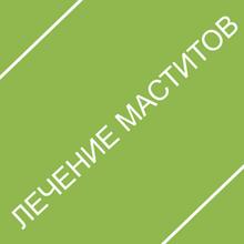 Маститы. лечение и профилактика
