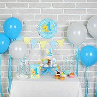Набор для оформления праздника '1 годик. Малыш', воздушные шары, подставка для торта, гирлянда, топперы,