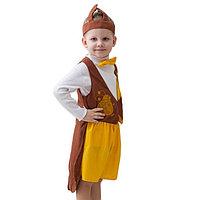 Карнавальный костюм 'Жук', шапка, фрак, шорты, рост 122-134 см
