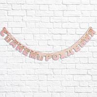 Гирлянда на люверсах 'С Днем Рождения', розовая с подарком, дл. 225 см