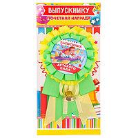 Орден - розетка 'Выпускник детского сада', d5,5 см