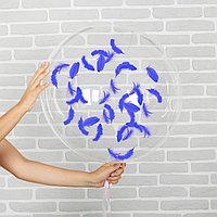 Шар воздушный 18' прозрачный, перья синие