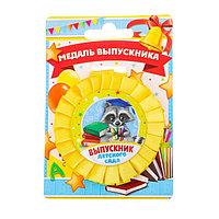 Медаль - розетка 'Выпускник детского сада', енот, 9,4 х 13,5 см