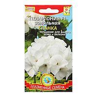 Семена цветов Пеларгония зональная 'Бланка', F1, 3 шт