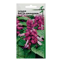 Семена цветов Сальвия 'Виста', лавандовая, 10 шт