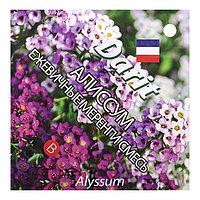Семена цветов Алиссум 'Ежевичные меренги', О, DARIT 0,2 г