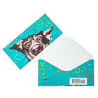 Конверт для денег 'Универсальный' собака, брызги (комплект из 5 шт.)