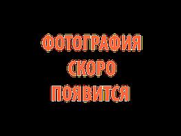 Сварог Машина термической резки CG1-30
