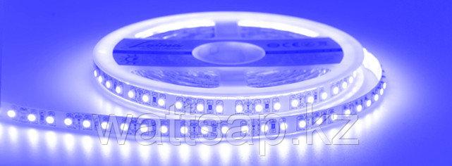 Светодиодная лента 3528 синего цвета 60 светодиодов на метр IP65