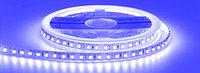 Светодиодная лента 3528 синего цвета 60 светодиодов на метр IP65, фото 1