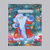 Пакет 'Дед Мороз', полиэтиленовый с вырубной ручкой, 20 х 30 см, 30 мкм (комплект из 100 шт.)