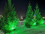 Прожектор светодиодный СДО 30Вт 6500К IP65 зеленый свет серый корпус Фарлайт, фото 2