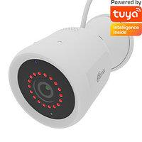 Видеокамера универсальная Ritmix IPC-260 S Tuya белый
