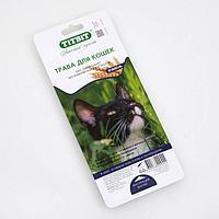Трава TiTBiT для кошек, ячмень, 50 г